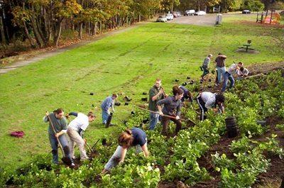 Environmental Sustainability Grants