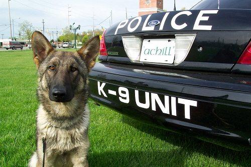 Police K9 Grants