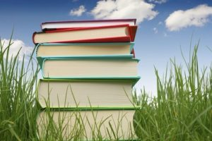 Federal Supplemental Educational Opportunity Grant Apply