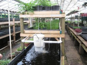 Agriculture Grants for Aquaponics