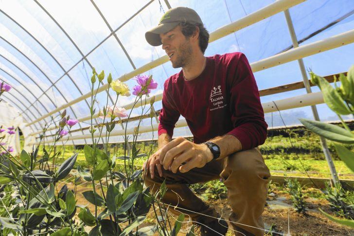 Farm Grants for Disabled Veterans