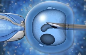 Grants For In Vitro Fertilization