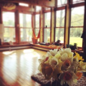 grants for yoga teacher training