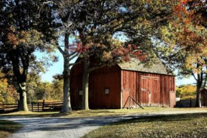 USDA rural development grants