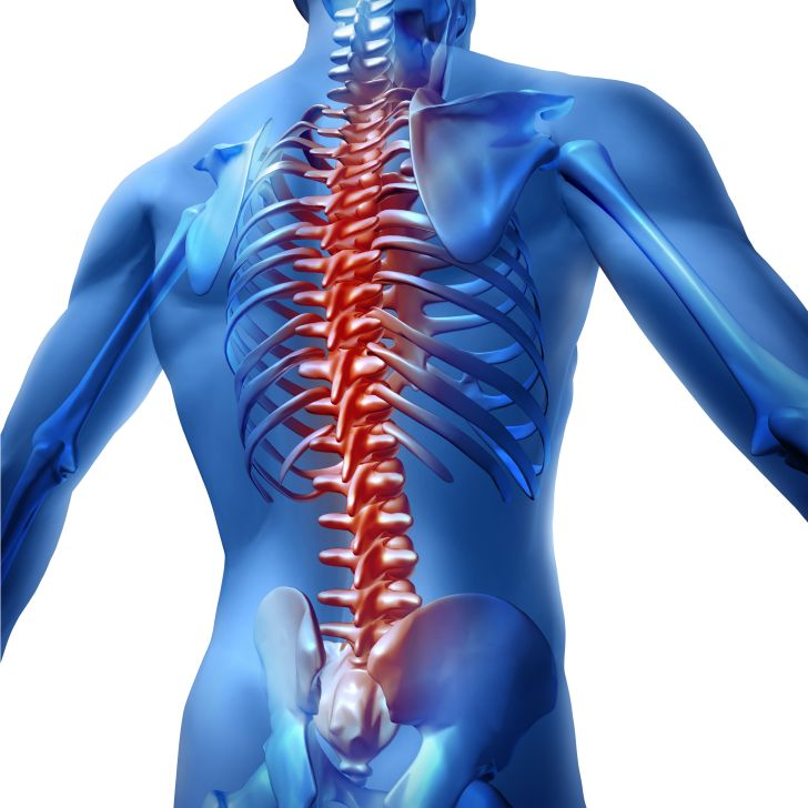 Spinal Cord Injury Research Grants