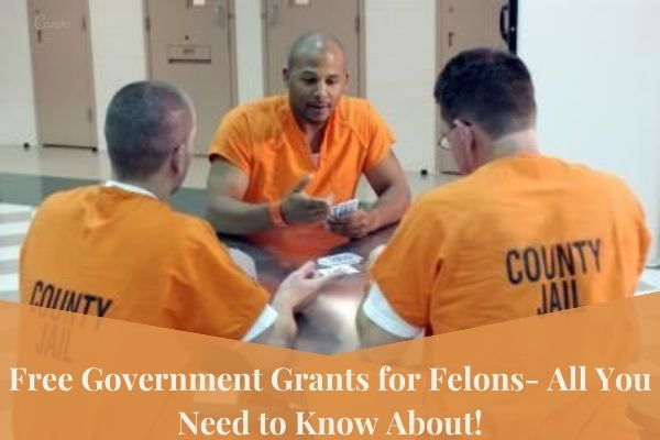 government grants for felons